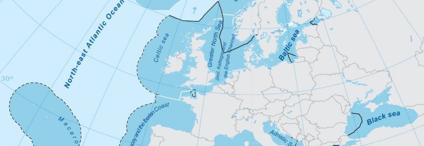 Spatial analysis of marine protected area networks in Europe's seas