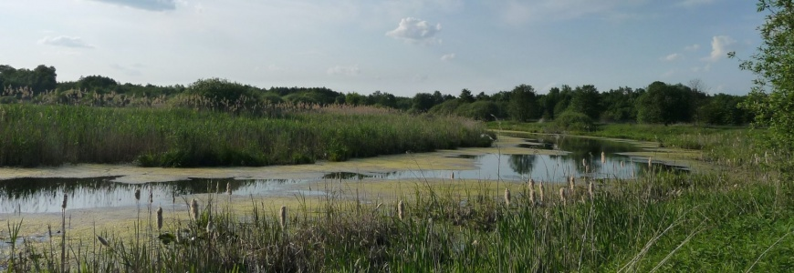 Preliminary assessment of river floodplain condition in Europe